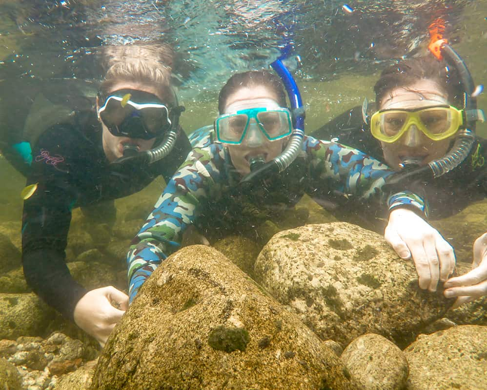 Snorkelling Fun with Friends