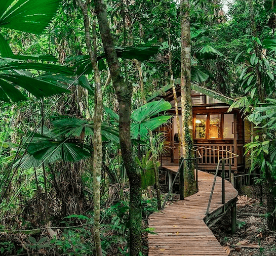 Wooden house in the rainforest