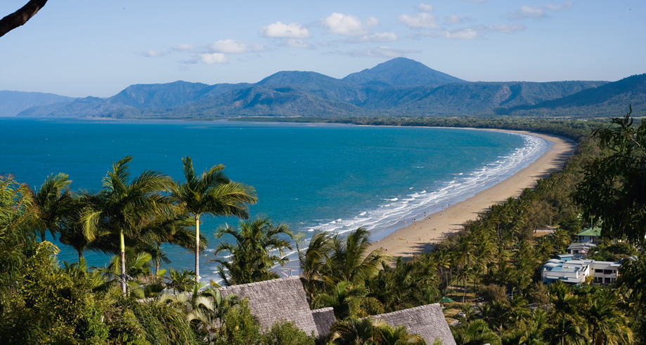 View across beach, palm trees and rainforest mountains at Four Mile Beach