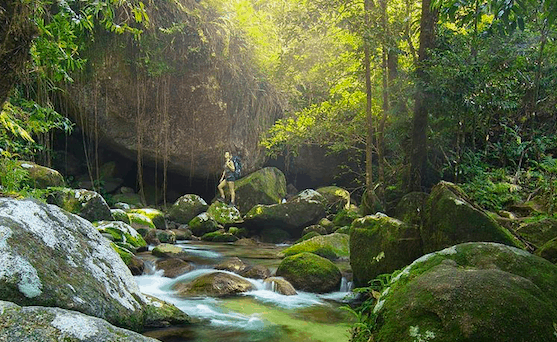 Girl standing in lush rainforest Cairns Hikes