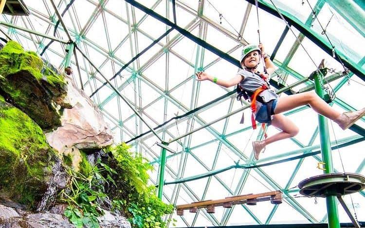 Child ziplining through indoor rainforest dome