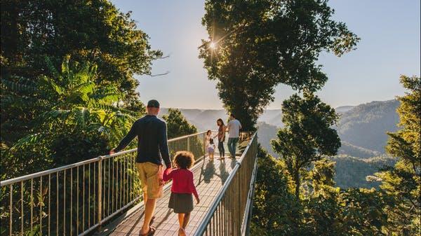 Mamu Tropical Skywalk Cairns Rainforests